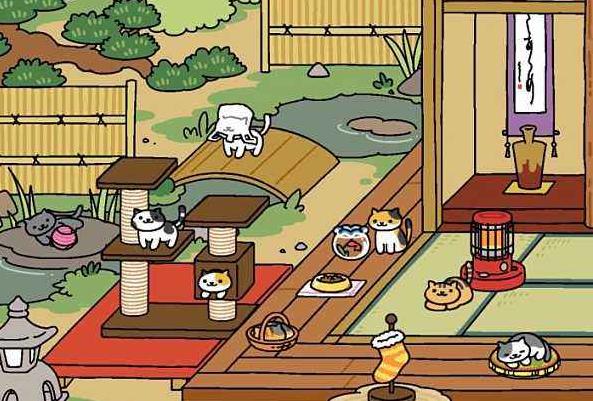 新手如何快速上手猫咪后院游戏,给你最强游戏攻略